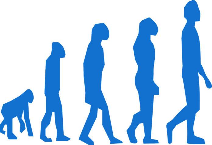 evoluzione creazionismo