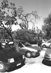 parcheggio 25 PCatino