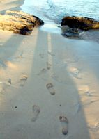 Impronte sabbia 52 Catino