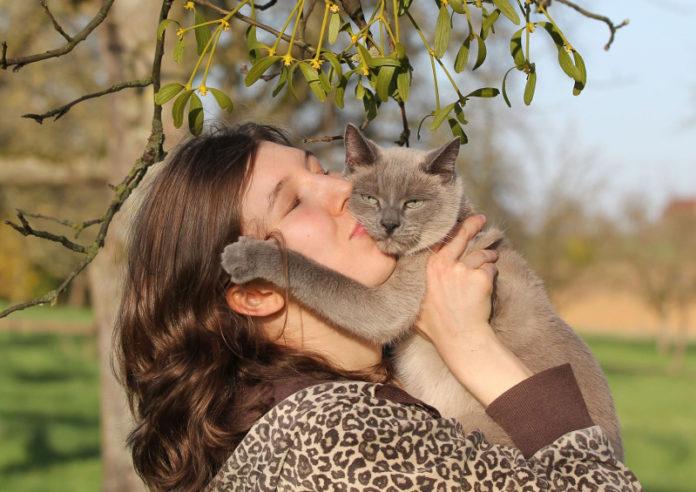 uomini animali gatto