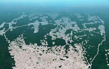 La foto di Survival mostra, mediante la grafica satellitare, l?estensione del taglio illegale del legno in uno dei territori degli Awá.