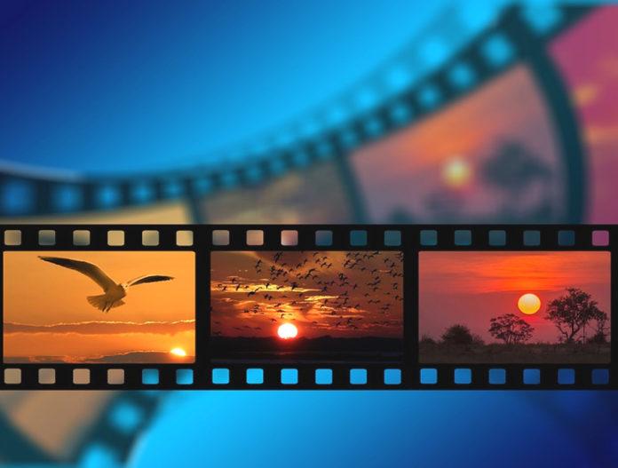 film festival cine