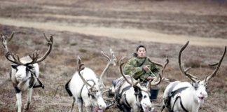 foto di Steve Morgan, Survival international