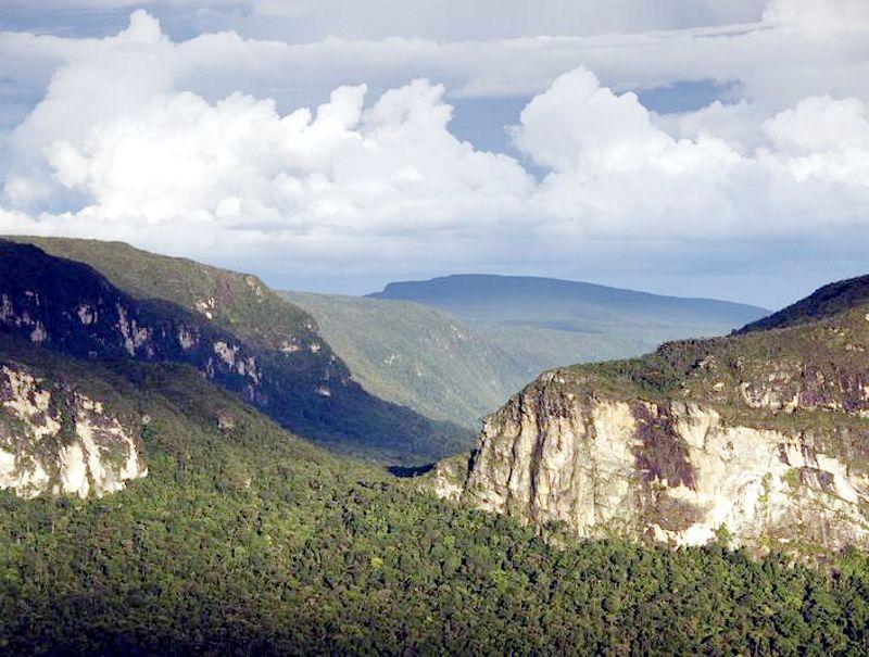 Amazzonia3