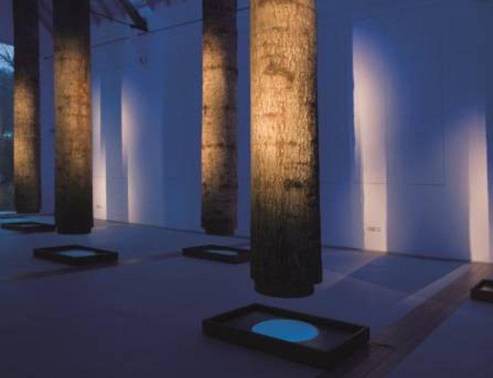 Fabrizio Plessi, La Foresta Sospesa, 1999, installation vidéo, © Norbert Hecht