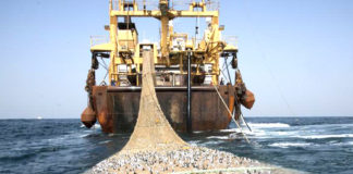 pesca strascico mare
