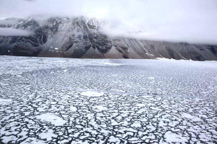 clima artico caldo