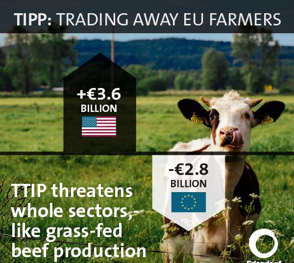 Impatto allevamento bovino