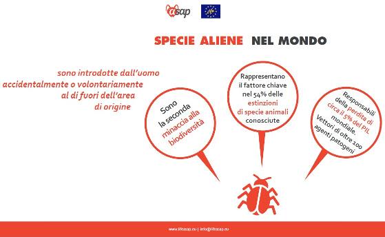 Aliene1