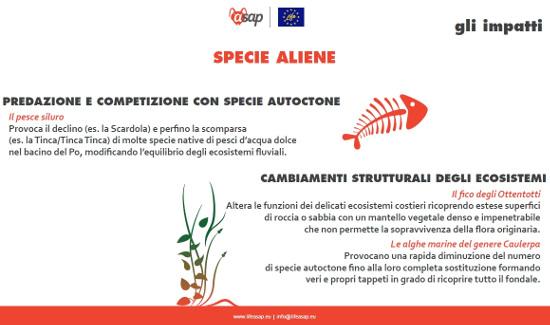 Aliene4