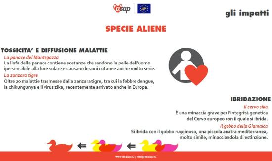 Aliene5