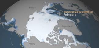 Artico Feb2017