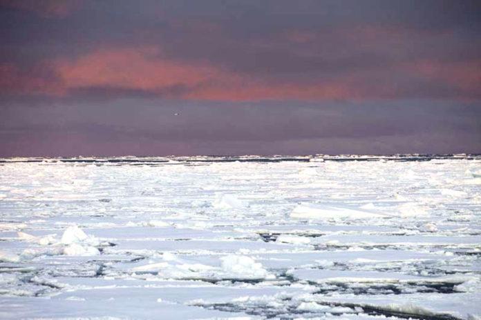 Groenlandia clima
