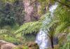 biodiversita parchi natura ambiente