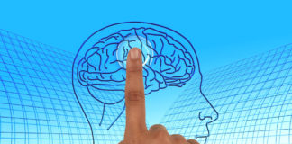 studio coscienza cervello