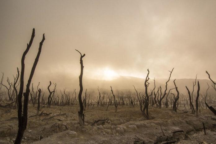 clima incendi siccita