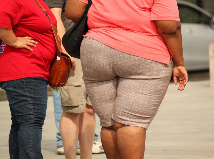 obesità cibo spazzatura
