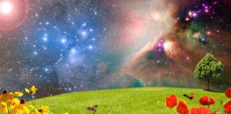 esobiologia pianeti panspermia