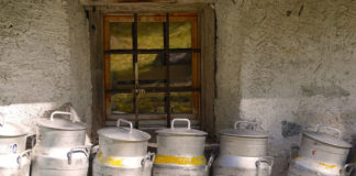 latte pastorizzazione boccardi 83