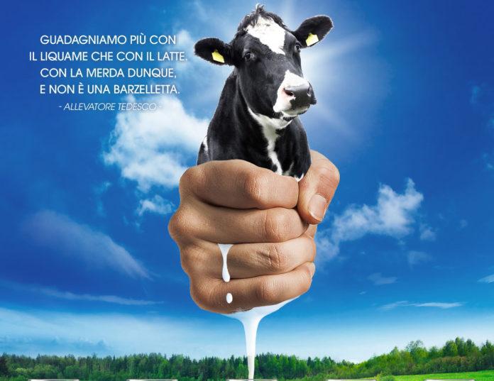 Milk System