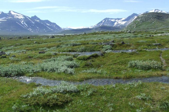 Bierikjåhkå Sarek Tundra Sweden