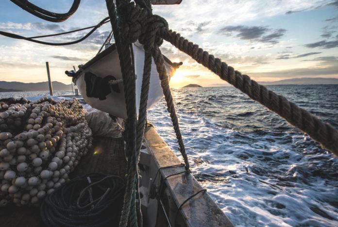 WWF Mediterraneo