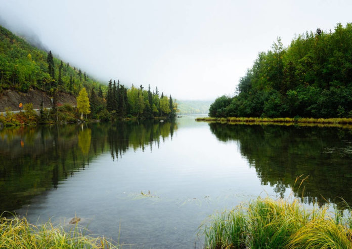 fiume cozze 84