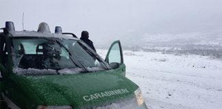 cufaa carabinieri forestali
