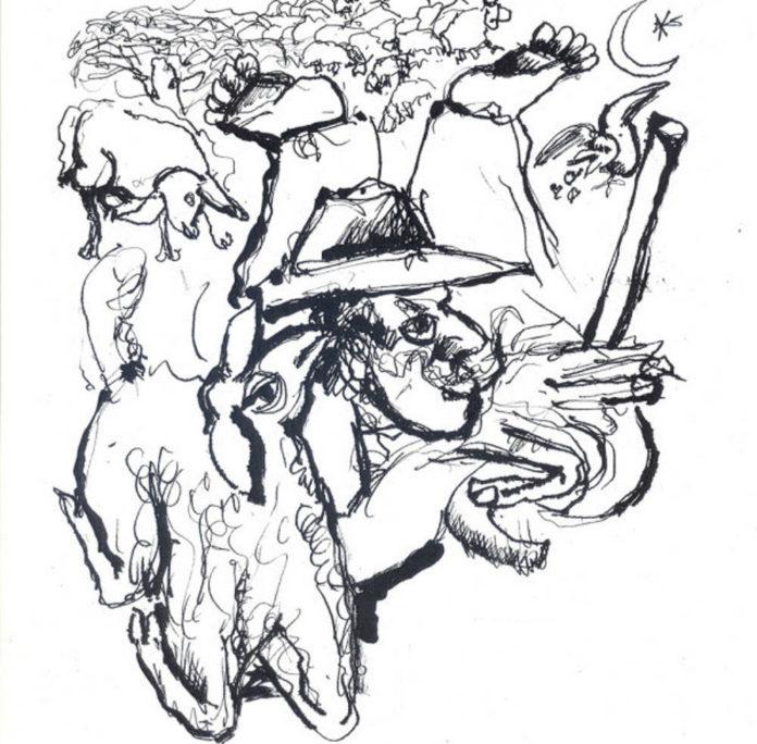rivolta pecore