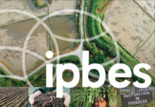 Report Ipbes