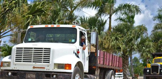 camion tir autocarri