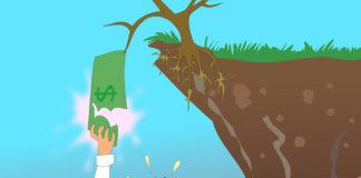 economia ambiente scalia 85
