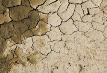fanghi depurazione deserto