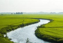pianura alluvionale fiume
