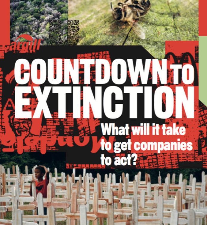 greenpeace estinzione