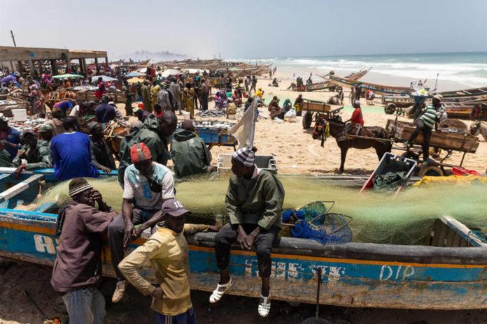 africa barche pesca