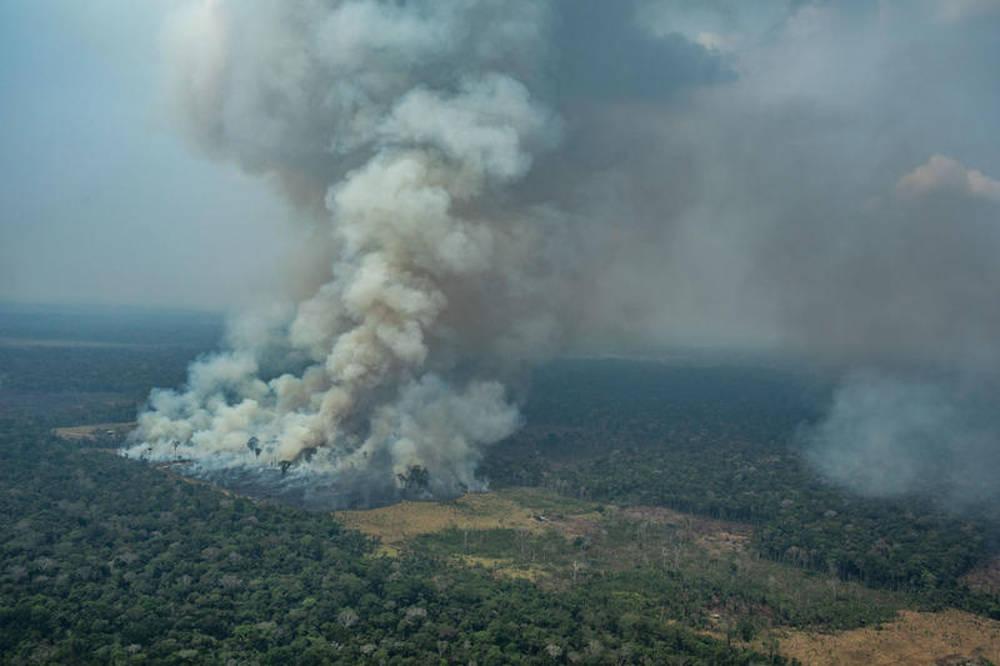 GP Amazzonia4