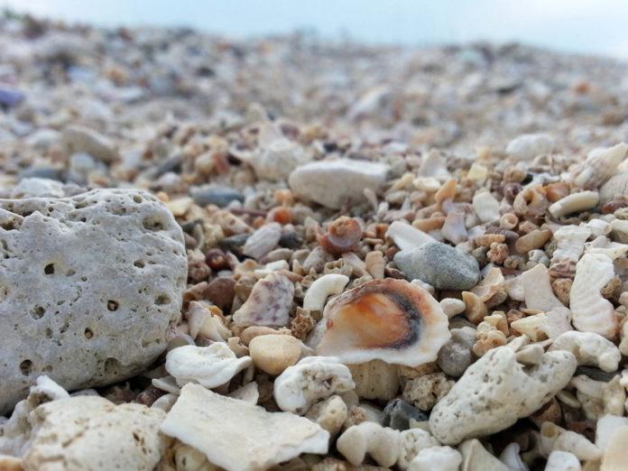 Bianchi Ilaria - Spiaggia San Vito, Polignano a Mare (BA)