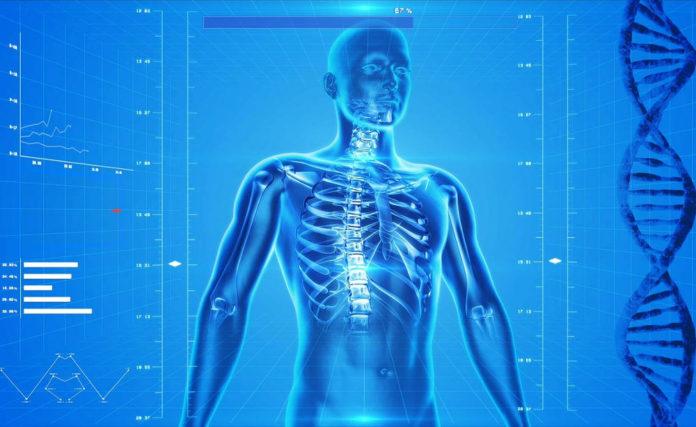 ossa osteoporosi inquinamento