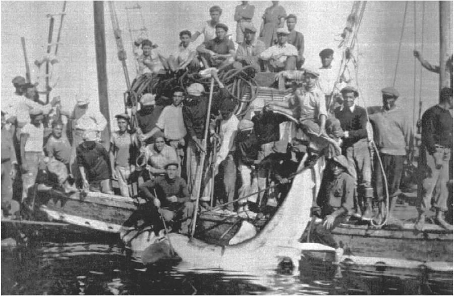 Marzamemi 1937