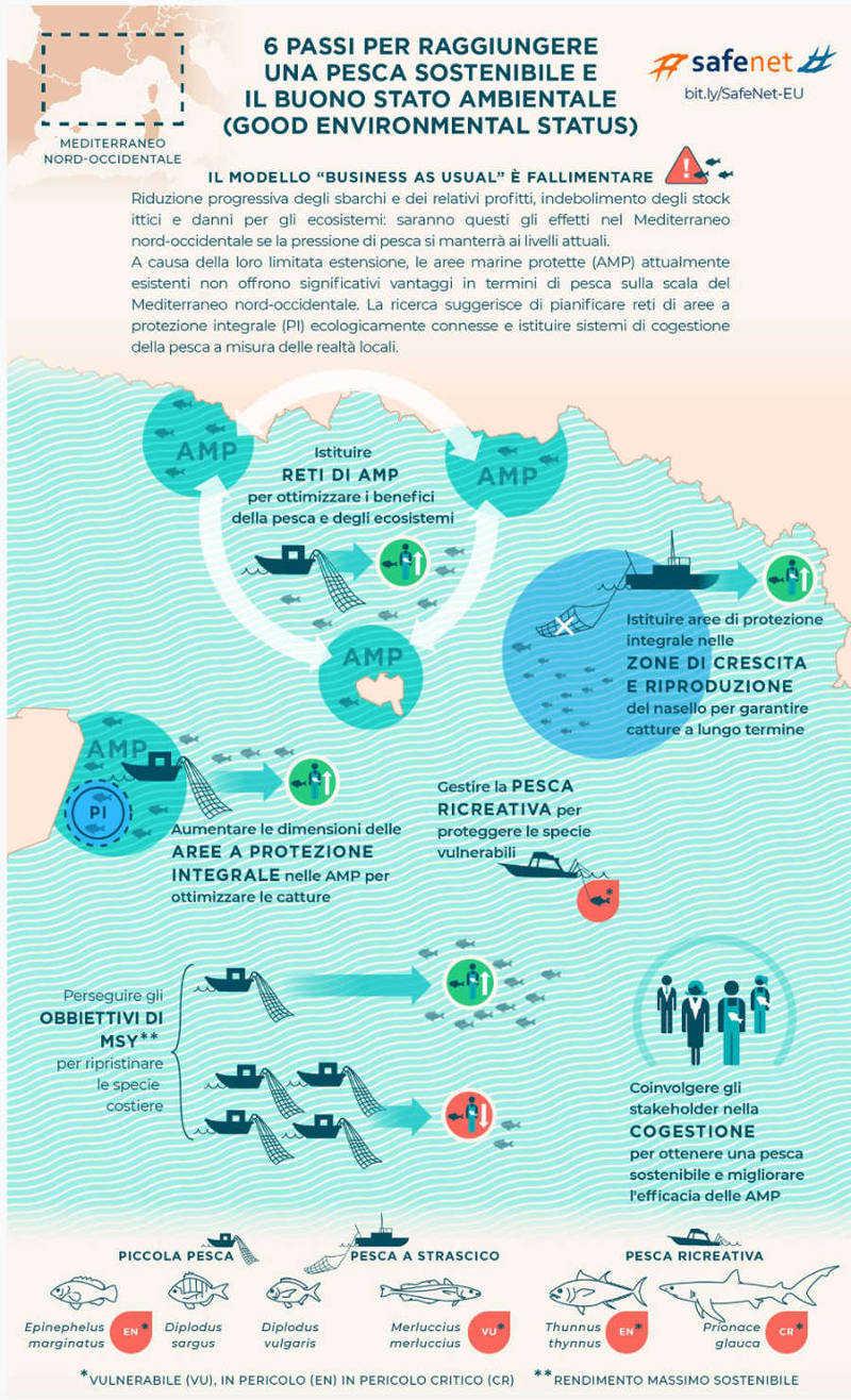 infografica pesca wwf