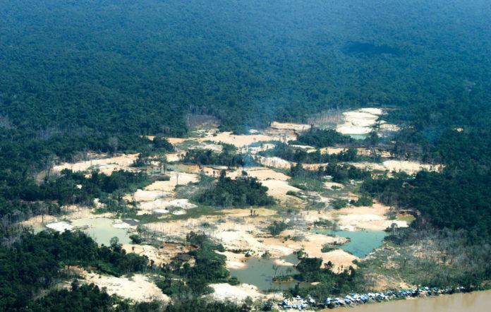 campo abusivo in amazzonia