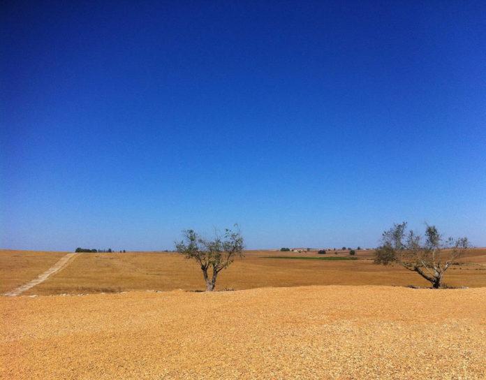 desertificazione inaridimento acqua Image by Nuno Tuna from Pixabay