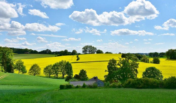 campagna paesaggio agricoltura