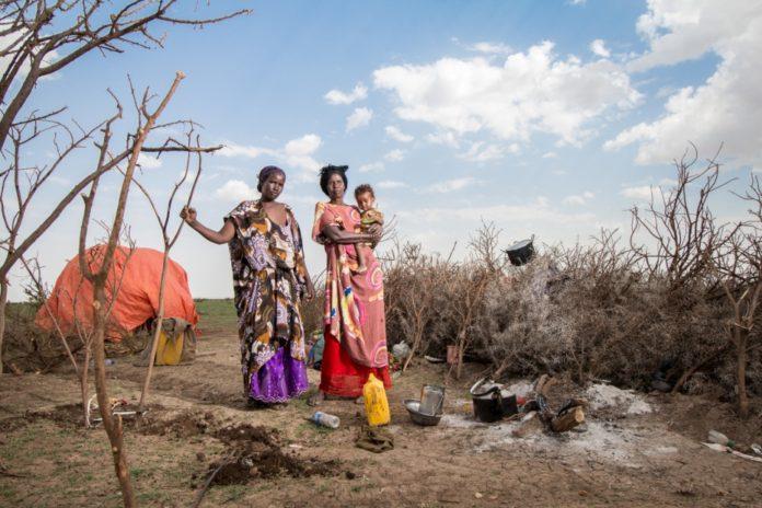somalia donne unhcr