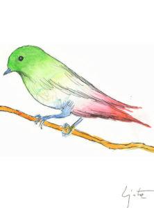 un uccellino per la rinascita1