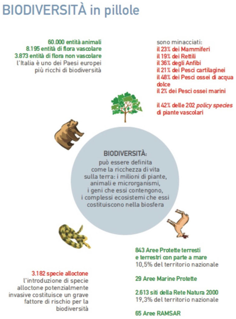 Ispra biodiversità