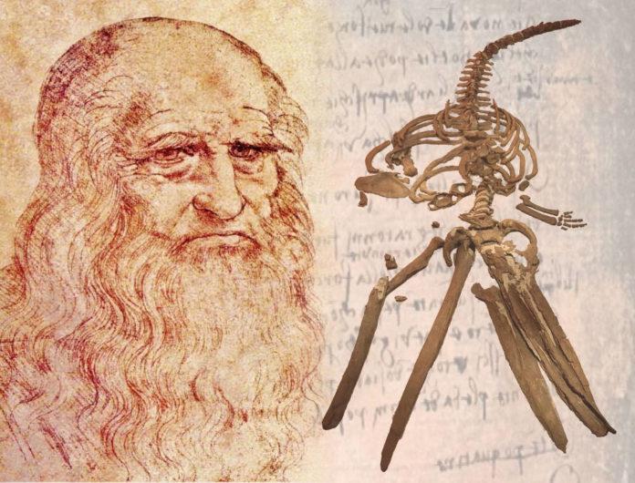 Fig1-Leonardo&whale1