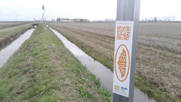 Foto Stazione Teriologica Foto credit Stazione Teriologica Piemontese