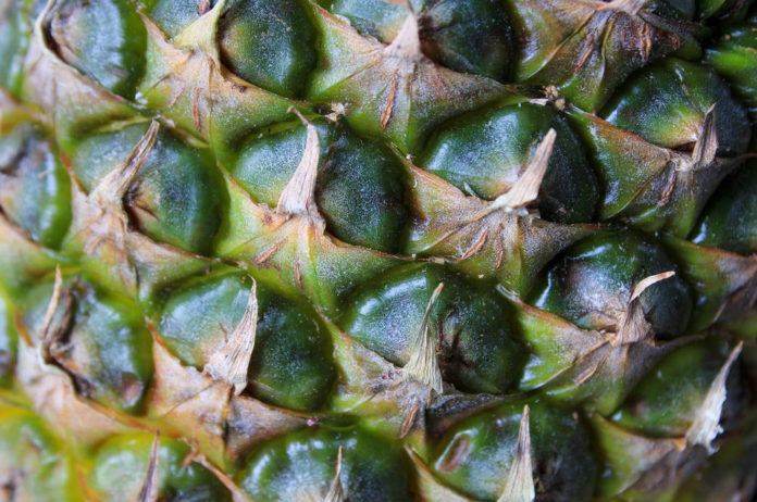 ananas vegetariani frutta 91